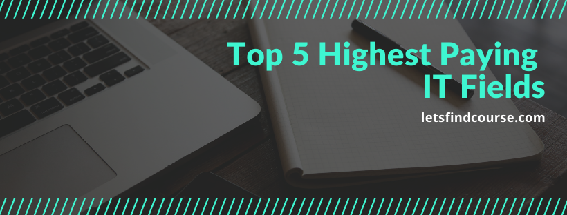 Top 5 Highest Paying IT Fields for 2021